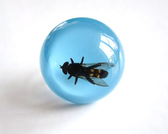 Striped Fly - Resin ring - Size M