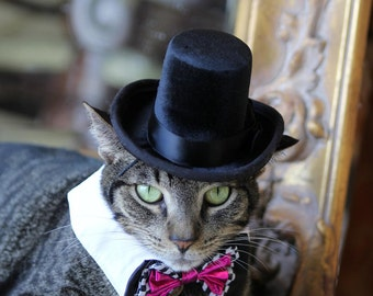 The Aristocrat cat top hat and Wild Card Bowtie collar for cats and dogs