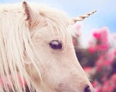 Unicorn Horn for Horses- you choose size and color. - TipTopTutu