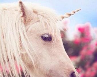 Unicorn Horn for Horses- Unicorn Browband, Unicorn Horn for Pony