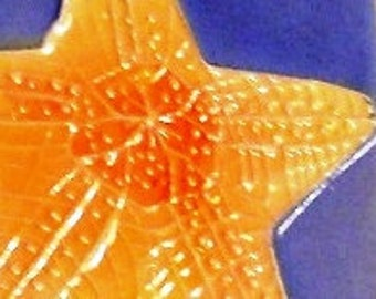 STARFISH ornament handmade ceramic marine sea ocean creature bright blue yellow orange relief carved original design by Faith Ann Originals