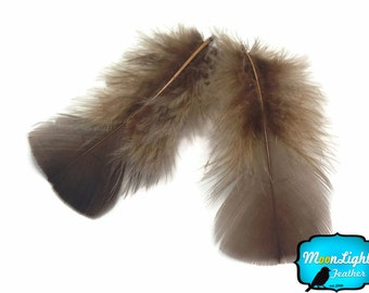 Turkey feathers, 1 Pack - COFFEE Turkey T-Base Plumage Feathers 0.5 oz. : 3370