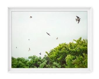 Mexico 2 // Fine Art Giclée Print // Photography