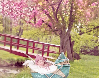 Newborn Baby Child Photography Prop Digital Backdrop for Photographers Sweet Peas in Spring