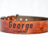 1 1/2 inch Custom Dog Collar with Name and Number