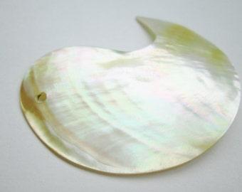 Focal Shell Paisley Pendant 46x28mm