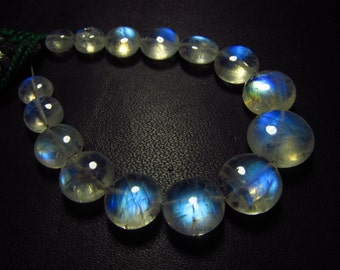 AAAA - Gorgeous High Quality Rainbow MOONSTONE - Smooth Polished Coin  Briolett Full Blue Flashy Fire Huge Size - 6.5 - 11.5 mm - 15 pcs