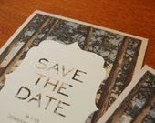 Woodsy Save the Date postcard