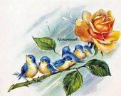 Bluebirds on Yellow Rose, Downloadable, Printable, Digital Art Image