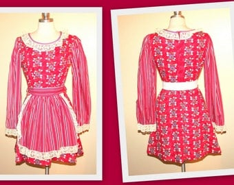1970s Dale California Young Collection/Floral and Striped/Fit and Flare Dress/Matching Apron/Oktoberfest