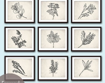 Herb Garden Collection (Series A2) - Set of 9 - Art Prints (Featured in White Stone Background and Black) (Customizable colors)