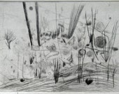 drypoint print  searchlight grasses  5 x 7 inches (5 1/8 x 7 1/16)
