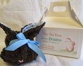 BROWNIE the Brown and Blue Boo-Boo Bunny with reusable ice cube -available for adoption