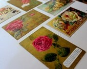 Lot of Antique Early 1900s Postcards Found Lot of Vintage Post Cards Assorted Themed Cards Floral Gold Red Nature Victorian Era Paper Goods
