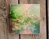 6x6 Green Pink Flower Nature Photo Transfer on Wood