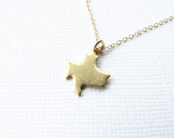 Tiny state necklace state charm necklace all 50 states Texas California Florida New York