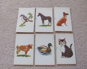 Vintage Spanish Flash Card - Horse - Cow - Bird - Duck - Dog - Cat