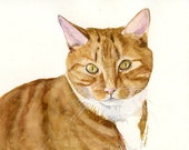 Custom Pet Portrait Painted from your Photos- Original Watercolor Painting by Julia Raven -10x8inches