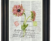 BOGO SALE Flower Art Print Pink Flower and Post Card Dictionary Book Page Art Print Vintage French Kitchen Art Print Botanical Art Print