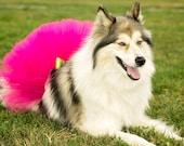 Super Fluffy Custom Dog tutu choose your colors SEWN XXS to XXXL
