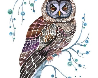 Lacy Owl, wild bird on a branch art print, size 8x10 (No. 30)