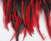 Feathers Red badger saddle hackles rooster feathers QTY 50 3 5 inches craft feathers laced feathers