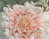 Preserved Pink Scabiosa Flower Boutonniere/Brooch with Dusty Miller
