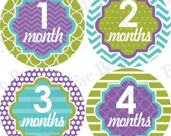 1st Year Baby Month Stickers, PLUS Just Born, Baby Milestone Sticker, Baby Girl Monthly Stickers, Baby Props, Chevron Puple Teal Green 071G