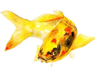 koi fish trio of watercolor prints or any 3 prints of your choice signed by artist Stephanie Kriza