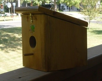 """Stained """"Froggy Sippin in the sun"""" Hanging Bird house Handmade"""