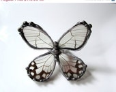 Black Friday Sale Real Butterfly Wing  Ring - Haetera Hypasia Clearwing - DebrasDivineDesigns