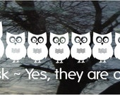 Owl Family Vinyl Car Window Decal - 6h x 19.3w - Set of 10 owls...PaPa, MaMa, and 8 little ones - with wording  FREE pink bows/blue caps