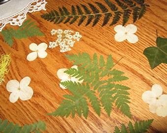 Nature Wedding Decor Ferns Forest Table Decor Woodland Wedding CONFETTI