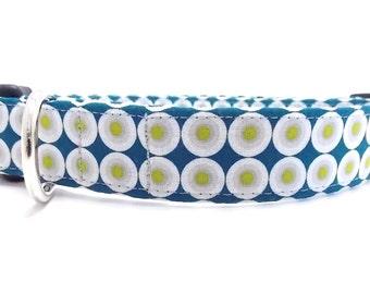 Teal Dog Collar and Leash, Cool Dog Collar, Vertigo Teal Dog Collar, Cute Dog Collar, Polka Dot Dog Collar, Teal Leash, Organic Dog Collar
