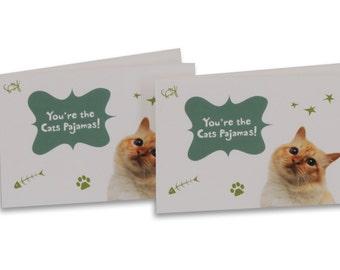 Cat's pajama's greeting card