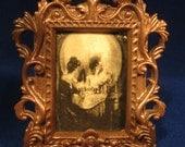 Goth, Vampire, Vanity Skull Illusion Picture Decor Halloween, Steampunk, Victorian, x-mas