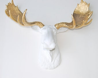 White Moose Head Faux Taxidermy - Gold Faux Antlers  - Faux Taxidermy Moose Wall Mount M0108