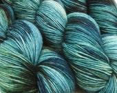 DESTINATIONS sock yarn St PETERSBURG hand dyed sw wool nylon fingering weight 3.5oz 460 yards