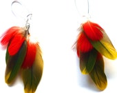 red yellow and green chandelier feather earrings- bright colorful macaw feather earrings