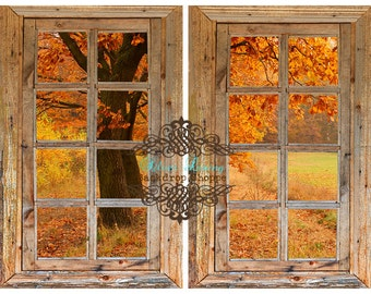 LARGE 5ft x 5ft Fall HARVESTPark View ----- Vinyl Photography Backdrop