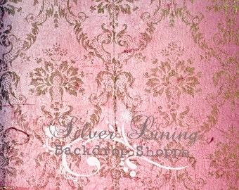 SALE Backdrop 5'x5'  Newborn - Children - Courtney Grunge Damask