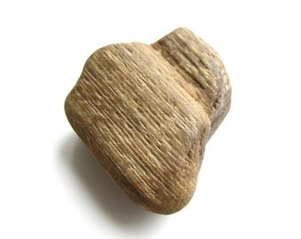 Petrified Wood - Found Objects Jewelry Supply
