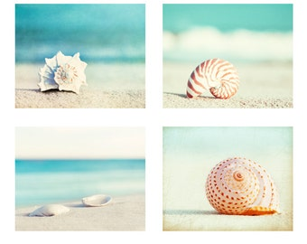 Beach Photography Set - Four Photographs, seashell sea shell photo print seashore decor turquoise aqua teal blue wall art - 11x14, 8x10, 5x7