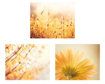 Set of Three Nature Photographs - yellow gold photography flower floral wall art spring mustard print set branches photo 11x14, 8x10, 5x7