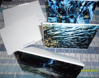 Set of four blank photo note cards and envelopes