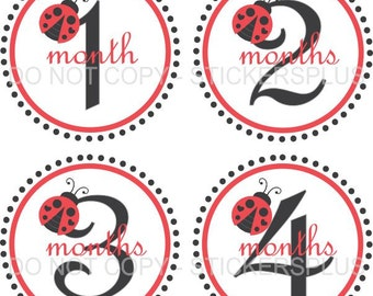 Baby Month Stickers Plus FREE Gift Girl Ladybug Lady Bug Dots Red Black Gray Shower Gift Milestone Stickers PRECUT Baby Age Stickers