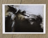 Postcard Horse 1
