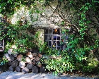 Wizard's Lodge - overgrown ivy - Uk - Manchester - Fine Art photography print - Home Decor - Wall art - Art print