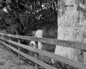 River Personalized Black and White Photo - 8x10 - Your Choice of Names or Date carved on the fence for a Unique Gift