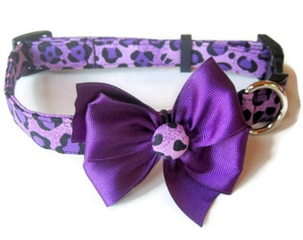 Purple Leopard Dog Collar size Medium